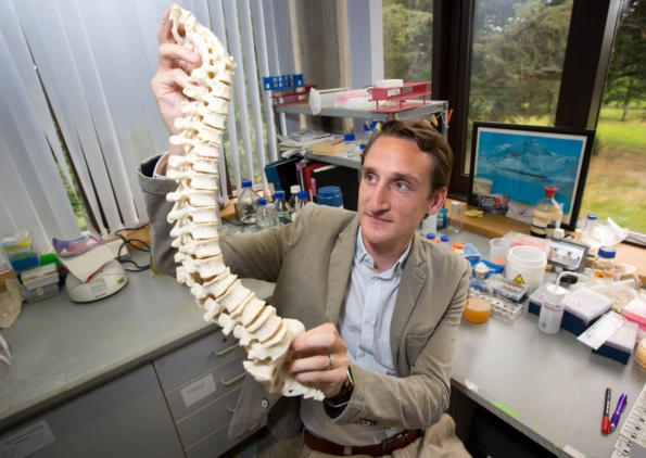 University of Limerick researcher receives famous international grant for research into bone-loss diseases